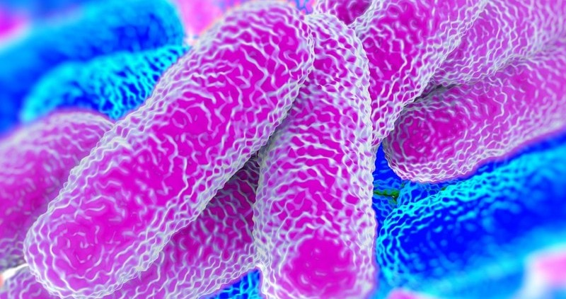 revised legionella acop