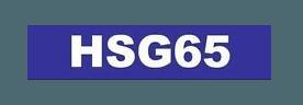 HSG65