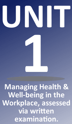 NEBOSH Health & Wellbeing Unit 1