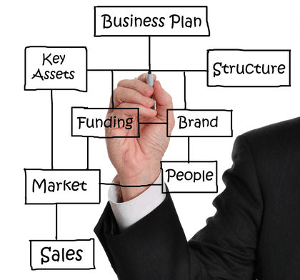 Business working model