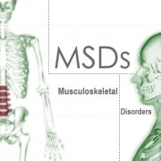 MSD Musculoskeletal Disorders