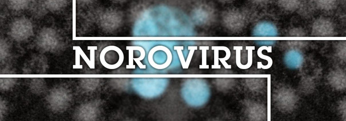 Sheilds eLearning Blog Header - NoroVirus