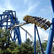 Theme Park Safety SHEilds Blog