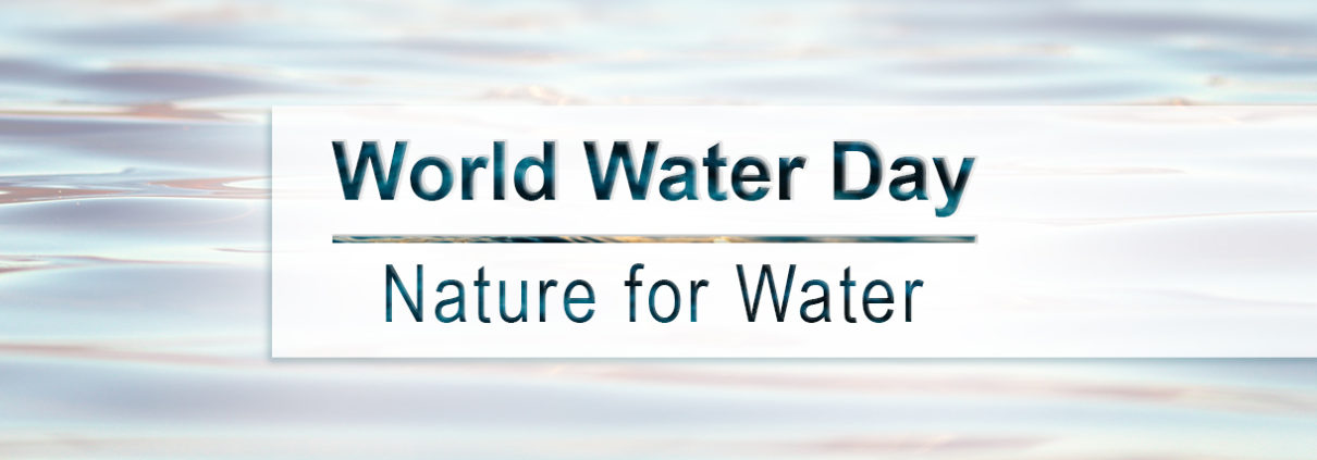 World Water Day Blog Image