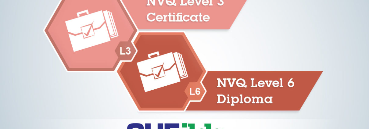 NVQ Level 3 and Level 6 Comparison