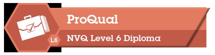 ProQual Level 6 Banner image